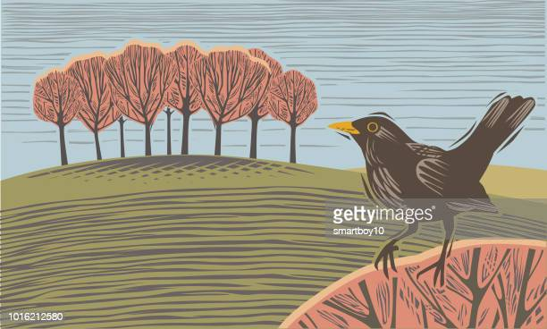 countryside scene with blackbird - woodcut stock illustrations