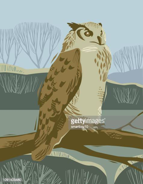 countryside scene with eagle owl - owl stock illustrations