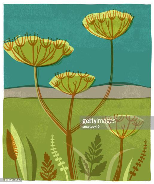 countryside scene with wild flowers and seed heads - silk screen stock illustrations