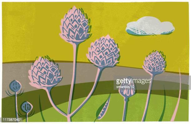 landschaftsszene mit wildblumen und samenköpfen - hecke stock-grafiken, -clipart, -cartoons und -symbole