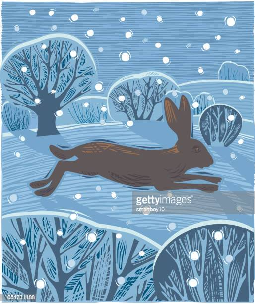 countryside with hare or jackrabbit - tradition stock illustrations