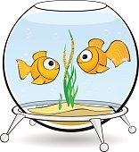 couple goldfish in an aquarium