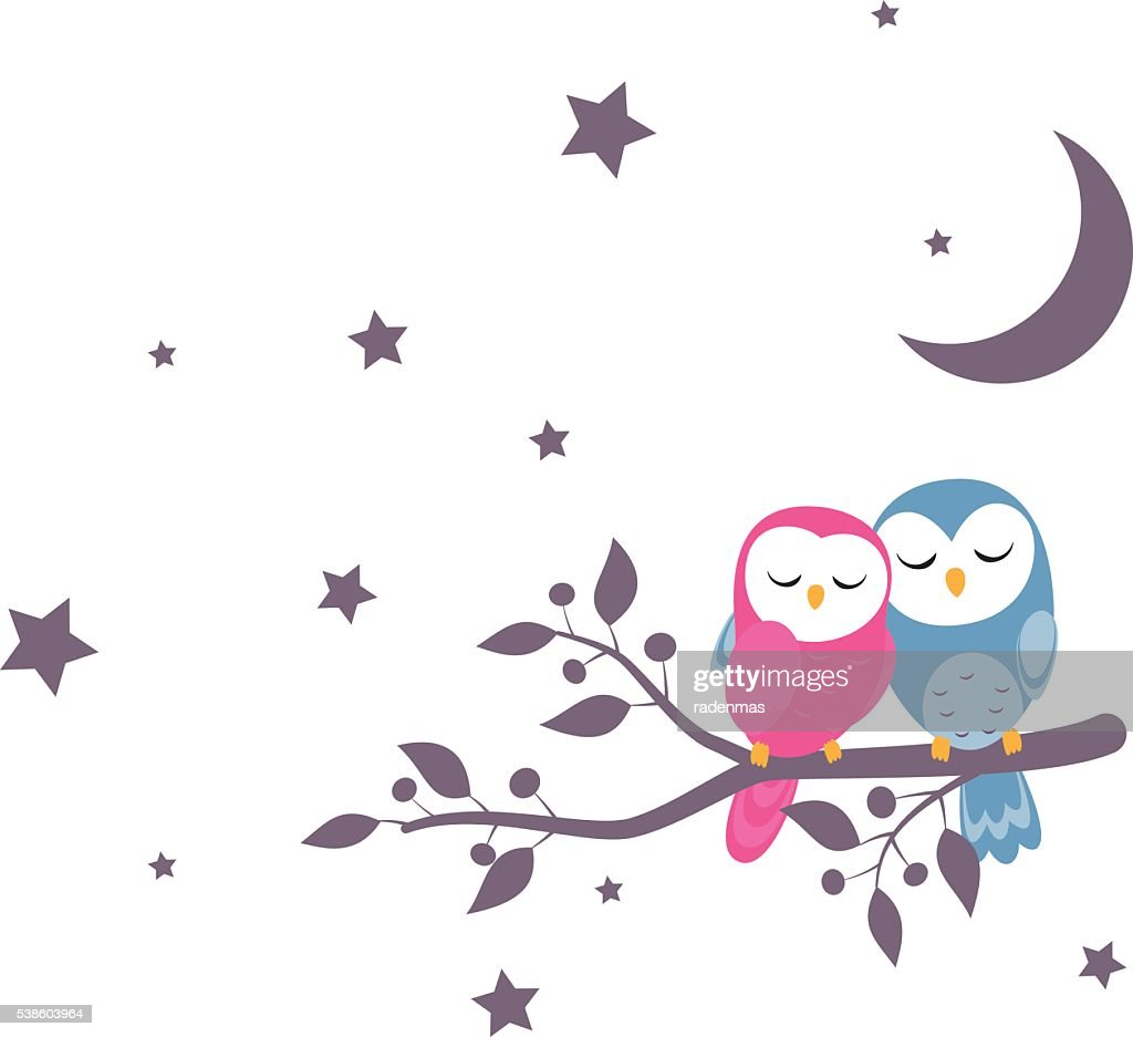 couples of owls sitting on night scene