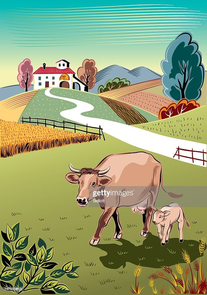 cow and her calf