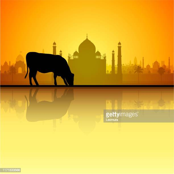 cow and taj mahal (all buildings are complete and moveable) - agra jama masjid mosque stock illustrations