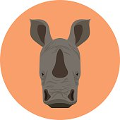 Cow Face Flat Icon Illustration
