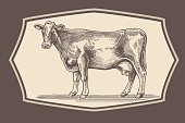 Cow in graphical style.