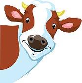 cow peeking - vector illustration