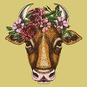 Cow portrait with floral wreath.