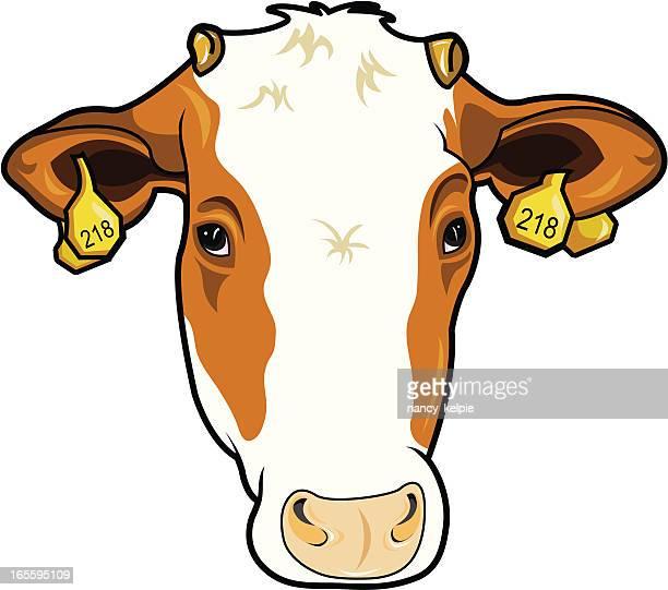 cow - calf stock illustrations, clip art, cartoons, & icons