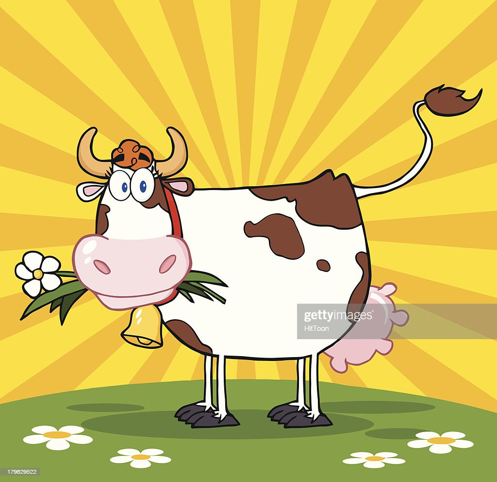 Cow With Flower In Mouth On A Meadow And Sunburst