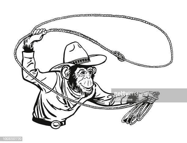 cowboy monkey with a lasso - chimpanzee stock illustrations, clip art, cartoons, & icons