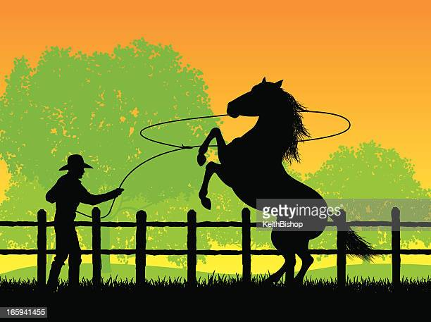 cowboy roping a stallion - paddock stock illustrations, clip art, cartoons, & icons