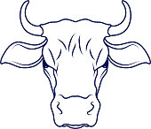 cow,cartoon cow,cow drawing,cow head Vector Illustration
