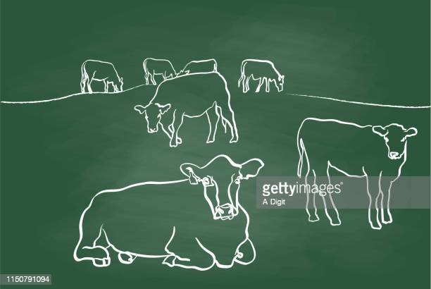 cows and calf chalkboard - calf stock illustrations, clip art, cartoons, & icons