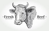 Cows head in graphical style.