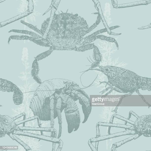 Nahtlose Muster Krabbe