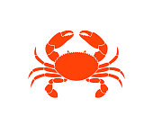 Crab symbol Isolated crab on white background
