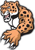 crawling leopard