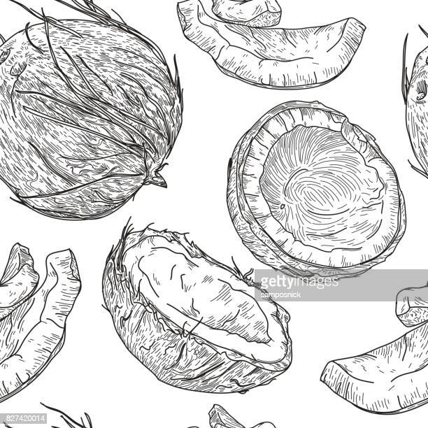 crazy for coconuts pattern - coconut stock illustrations, clip art, cartoons, & icons