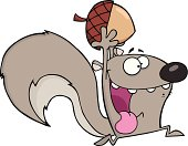 Crazy Gray Squirrel Cartoon Mascot Character Running With Acorn