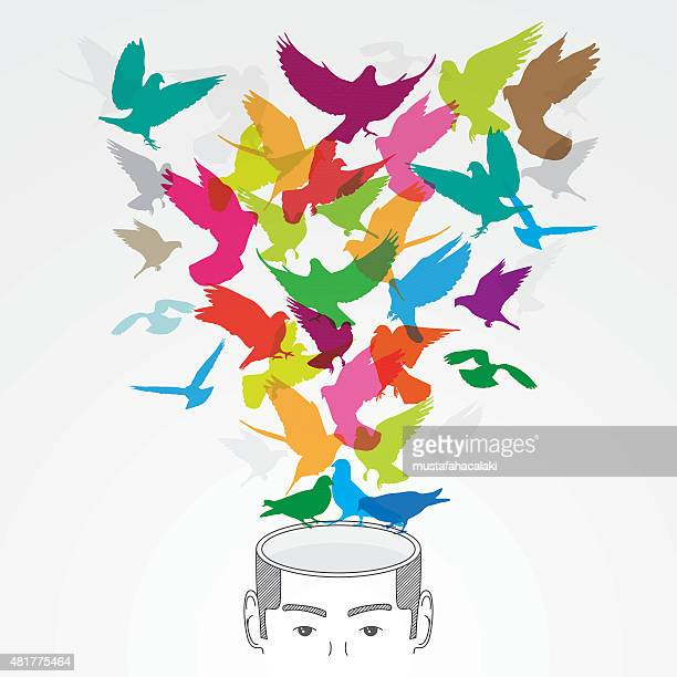 Creative head with colourful birds