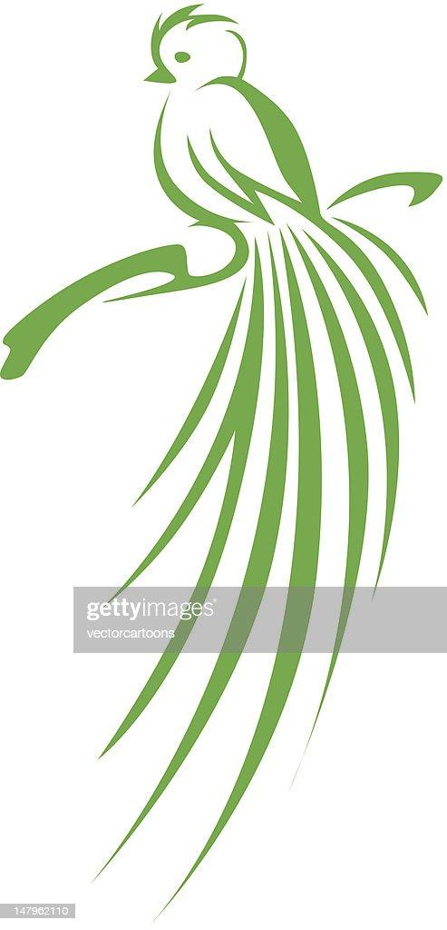 Creative Quetzal Bird Illustration