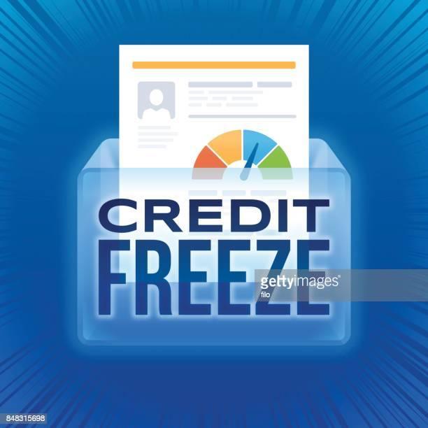 Credit Freeze