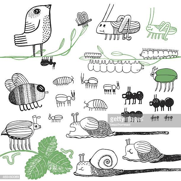illustrations, cliparts, dessins animés et icônes de de petites bestioles - escargot