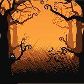 Creepy forest frame