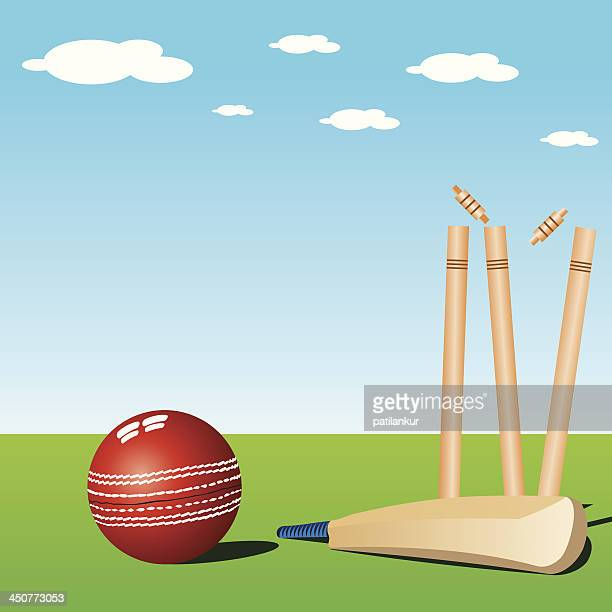Cricket Stump Stock Illustrations And Cartoons