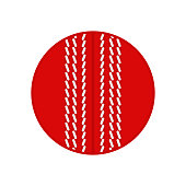 Cricket ball. Vector silhouette. Vector icon isolated on white background.