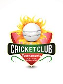 cricket banner background with flame