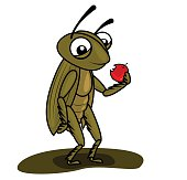 cricket eating a apple