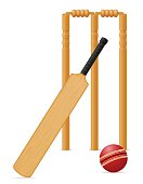 cricket equipment bat ball and wicket vector illustration