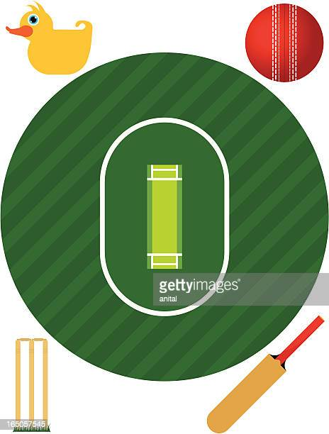 cricket pitch (aerial view) - cricket pitch stock illustrations