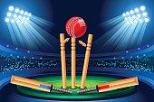 Cricket stadium vector wallpaper