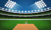 Cricket Stadium with Neon Lights. Arena.