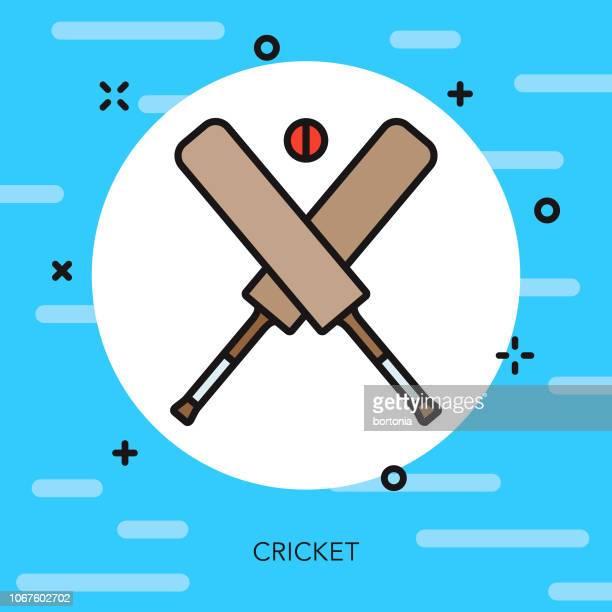 cricket thin line sports icon - cricket bat stock illustrations