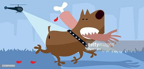 ilustraciones, imágenes clip art, dibujos animados e iconos de stock de pitbull penal - eutanasia