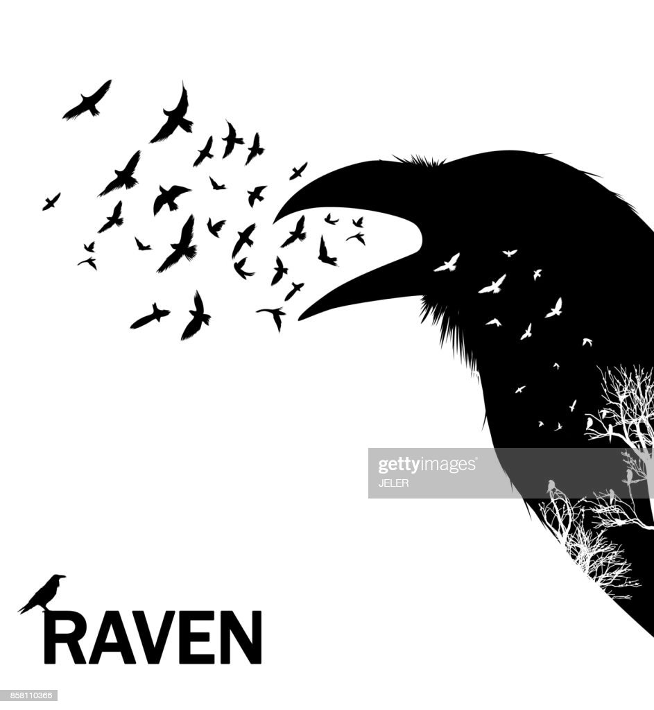 Croaking crow or raven. Vector Illustration.