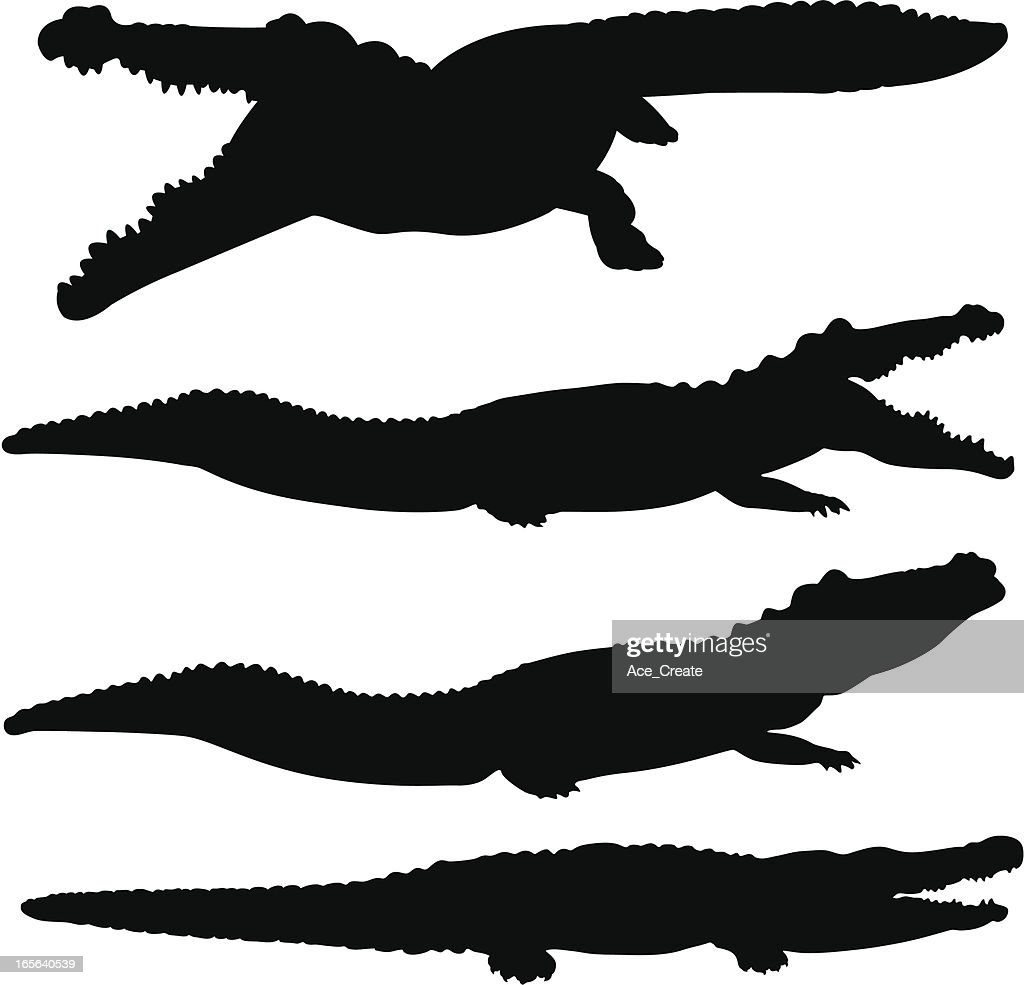 Crocodile and alligator silhouette set