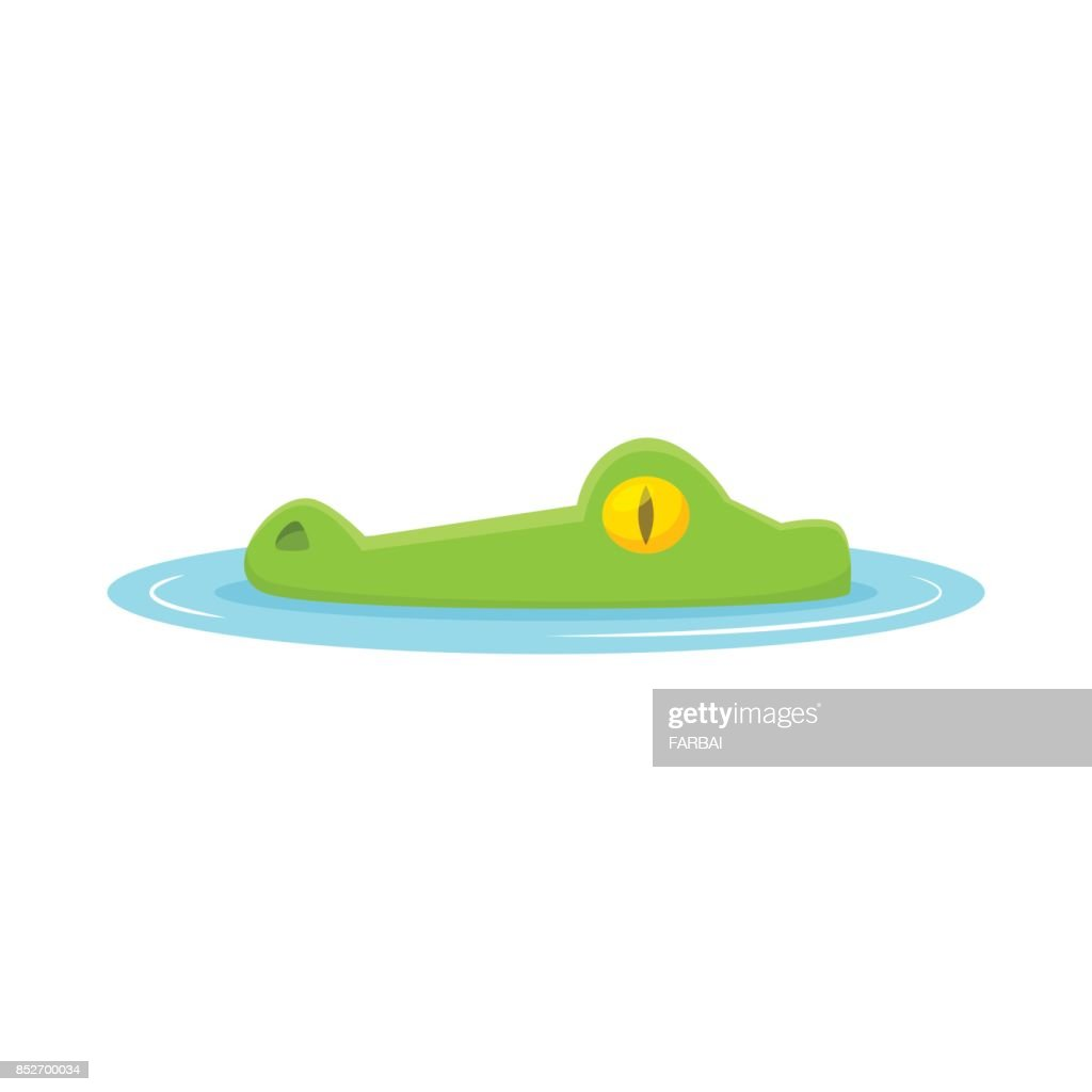 Crocodile head out of water vector