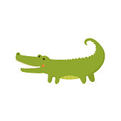 Crocodile Realistic Childish Illustration