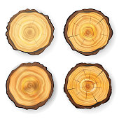 Cross Section Tree Set Wooden Stump Vector. Circles Texture Isolated. Tree Round Cut With Annual Rings