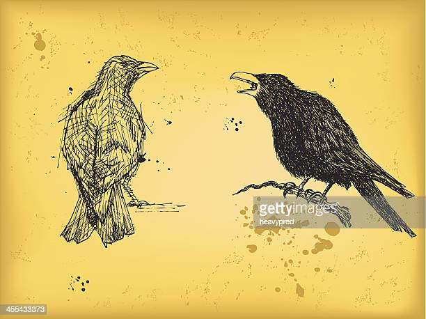 ilustraciones, imágenes clip art, dibujos animados e iconos de stock de crow y raven - cuervo