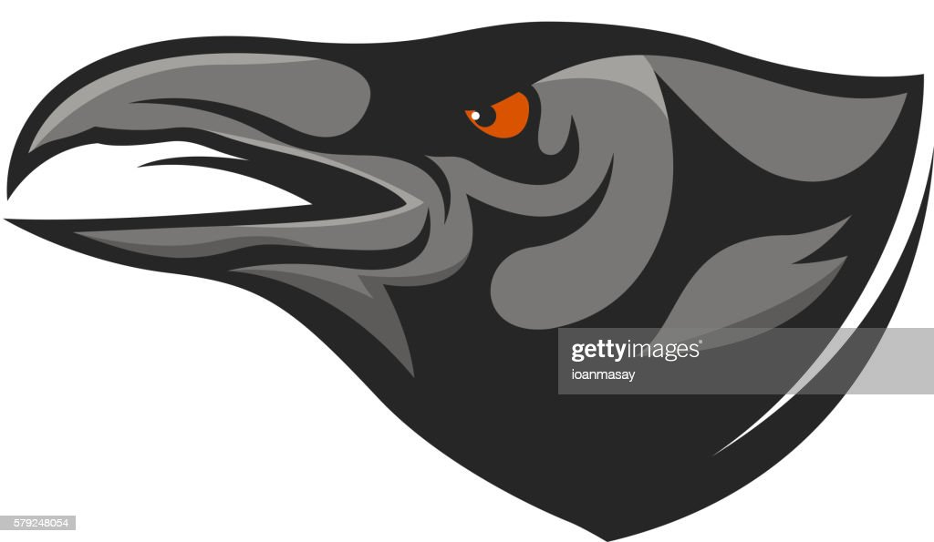 Crow head mascot. Raven head illustration.