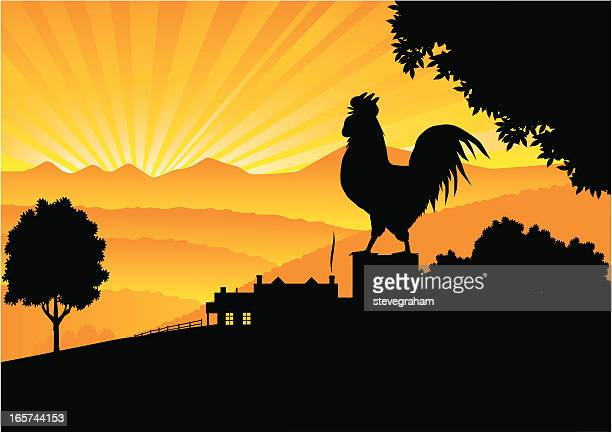 crowing rooster - cockerel stock illustrations, clip art, cartoons, & icons