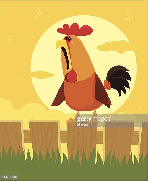 ilustrações, clipart, desenhos animados e ícones de crowing galo - cockerel