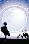 Crowned Cranes silhouettes at night with full moon